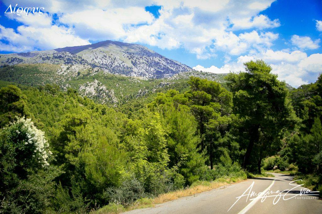 Εύβοια, Διακοπές, φύση, χωριό, βουνό, φαράγγι, σπηλιά, δάσος, εξόρμηση, Ελλάδα, Στερεά Ελλάδα, Σκύρος, καλοκαίρι, χειμώνας, ιππασία, Αιγαίο, Ευβοϊκός, Σκύρος, Φερυ μποτ, λεωφορεία, ΚΤΕΛ, αξιοθέατα, προορισμοί, αεροδρόμιο, έξοδος, ποτό, φαγητό, καφέ, μπαρ, κλαμπ, πάρτι, ταβέρνες, εστιατόρια, παραδοσιακή, Αθήνα, δραστηριότητες, ορειβασία, κατάδυση, σπορ, απόδραση, νησί, ταξίδι, παραλίες, διασκέδαση, εκδρομή, ενοικιαζόμενα, τζηπ, μονοήμερη, τριήμερο, διήμερο, προορισμός, απόδραση, διαμονή, κάμπινγκ, οργανωμένη παραλία, ξενοδοχεία, κοντά στην Αθήνα, Evia, Evvoia, Euboea, Greece, Greek islands, beach, sand, going out, booking, hotels, café, bar, club, leisure, visit evia, near Athens, island near Athens, Athens, Mediterranean, Aegean, trekking, jeep, climbing, diving, beach bar, events, natura, nature, forest, canyon, gorge, camping, wanderlust, traditional, guesthouse, villas, rooms to let, Skyros, ferry boat, island hopping, party, wind surg, kite surf, horse riding, airport, travel Greece, visit Greece, discover Greece, winter Greece, Greek summer